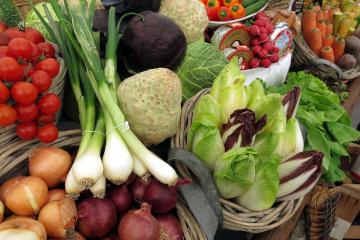 Marktstand mit Körben verschiedener Gemüsesorten (z. B. Zwiebeln, Lauchzwiebeln, Kohl, Sellerie, Chicoree) sowie Käse